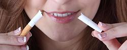 feature_rauchentwoehnung